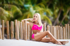 Beautiful girl with long blond hair in bikini on the shore of a Stock Photography