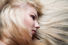 Beautiful girl with long blond hair and stylish ma Royalty Free Stock Image