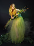 Beautiful girl in a long green dress with a grass Stock Image