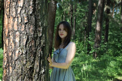Beautiful girl with long hair in dress standing near tree. In forest on summer day, focus on tree Royalty Free Stock Photography