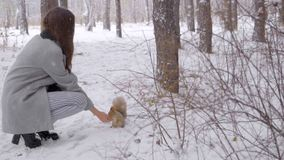 Beautiful young woman feeds a squirrel in a winter park. slow-motion. She is happy in winter. Smiling. Winter park stock footage
