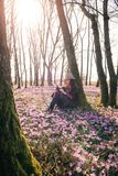 Spring.Sun.Blossoming crocuses in forest and a female traveler Stock Photos