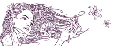 Beautiful girl with long hair and lily flowers. Linear graphic drawing. Realistic graphic illustration Stock Photos