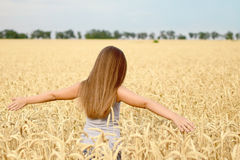 Beautiful girl with long heir walking through golden wheat field. Concept of purity, growth, happiness stock photography