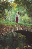 Beautiful girl in long medieval dress standing on the bridge nea stock photography
