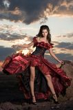 The beautiful girl in a long red dress Royalty Free Stock Images