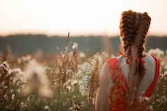 Beautiful girl with long red hair. stock photography