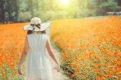 Beautiful girl in a long white dress of enjoying a walk in the park at retro flowers background Royalty Free Stock Image