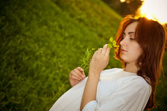 Beautiful girl in the meadow Stock Images