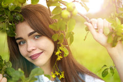 Beautiful girl in a meadow in the morning Royalty Free Stock Photo
