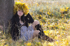 Beautiful girl in the meadow Stock Image