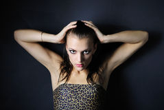 Beautiful girl model in leopard topic Royalty Free Stock Image