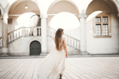 Beautiful Girl, Model With Long Hair Posing In Old Castle Near Columns. Krakow Vavel Stock Photography