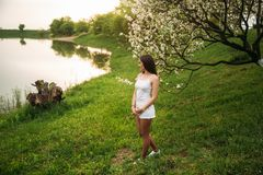 Beautiful girl near the blooming trees. spring time. Beautiful girl near the blooming trees. spring royalty free stock image