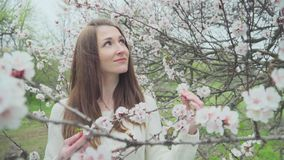 Beautiful girl near blossoming tree in spring.  stock footage