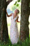 Beautiful girl near tree. Beautiful girl in a long dress with a bright trunks of large trees Stock Photo