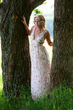 Beautiful girl near tree. Beautiful girl in a long dress with a bright trunks of large trees Royalty Free Stock Photos