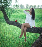 Beautiful girl near the tree. Beautiful girl in a white shirt near the tree Royalty Free Stock Photos