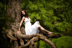 Beautiful girl on old tree Royalty Free Stock Photo