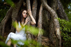 Beautiful girl on old tree Royalty Free Stock Images