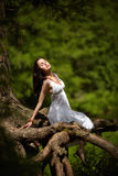 Beautiful girl on old tree Stock Images