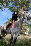 Beautiful Girl On The Horse On Background Of The Summer Forest Royalty Free Stock Images