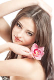 Beautiful girl with orchid on white Royalty Free Stock Image