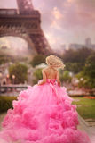 Beautiful girl in Paris Stock Photography