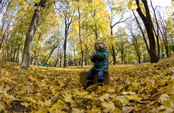 Beautiful girl in the park. Beautiful little girl playing in an autumn park Stock Photos