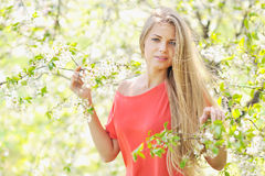 Beautiful girl in the park in summer Stock Photos