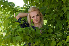 Beautiful girl peeks out from the bushes Stock Photos