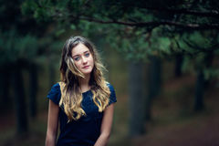 Beautiful girl in a pine forest Stock Photos
