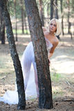 The beautiful girl in pine wood. The beautiful blonde costs in coniferous wood between trees Stock Photos