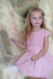 Beautiful girl in a pink dress Stock Photo