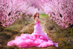 Beautiful girl in a pink dress in peach garden Royalty Free Stock Images