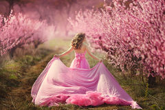 Beautiful girl in a pink dress in peach garden Stock Image