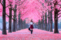 Beautiful Girl with Pink Leaves in Nami Island. Beautiful Girl with Pink Leaves in Nami Island, South Korea Stock Image