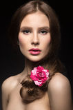 Beautiful girl with pink lips and a rose in her hair.  Beauty face. Stock Photos