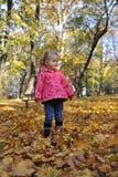 Beautiful girl playing. Beautiful little girl playing in an autumn park Stock Photos