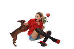 Beautiful girl playing with a dog Royalty Free Stock Photography