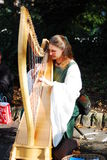 Beautiful girl playing harp Royalty Free Stock Photos