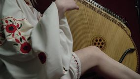 A girl in traditional clothes plays on a bandura. Beautiful girl plays on a bandura in a white dress with flowers stock video