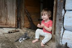 A beautiful girl plays with a cat in the village of my grandmother royalty free stock image