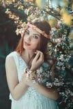 Beautiful girl among plum flowers Royalty Free Stock Photos