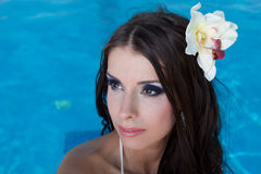 The beautiful girl in pool Royalty Free Stock Images