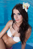 The beautiful girl in pool Stock Photography