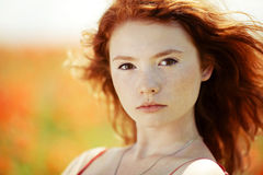 Beautiful girl in poppy field Royalty Free Stock Image
