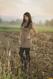 Beautiful girl poses in a field Stock Photos