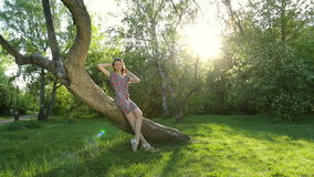 Beautiful girl posing at sunset at the tree in the forest. stock video footage