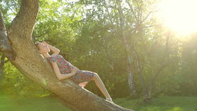 Beautiful girl posing at sunset at the tree in the forest. stock footage